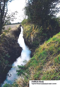 Paddock Drain - typical Board maintained water course